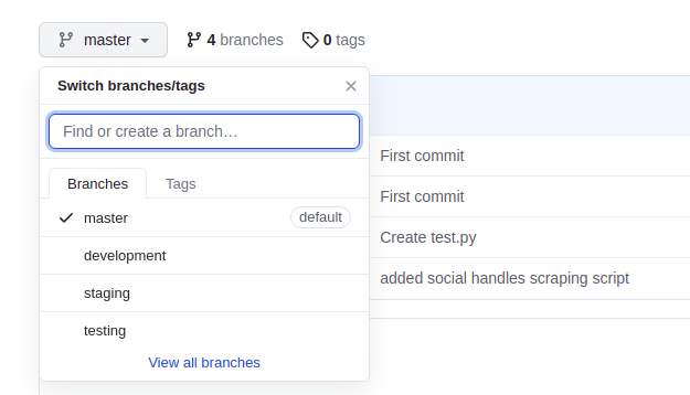 After Converting Local Branch Into Remote Branch